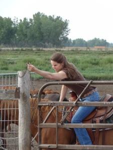 Doing gates...