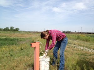Taking a water sample out of one of the five testing wells that surround the feed yard.