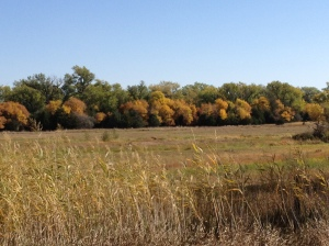 God's paintbrush is evident as fall prevails on the prairie...