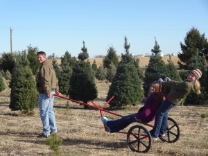 What better way to begin the search than hitching a ride around the tree farm...