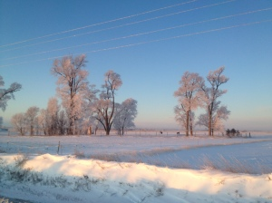 The quiet beauty of winter on the prairie sometimes hides the harshness of Mother Nature...