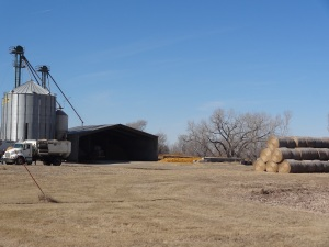 A further out view of our feeding barn and feed storage area...
