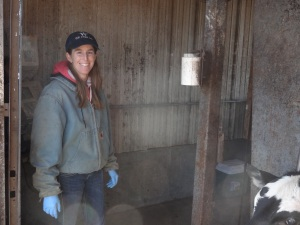 """I've become a farm girl and the days that I spend in the processing barn """"working cattle"""" are some of my favorites..."""