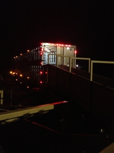 A cattle semi-truck backing up to my unloading chute about 12:30am...