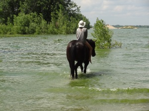 My favorite quarter horse and I cooling off with a swim in the lake...