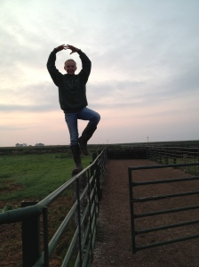 Pausing for a moment at dawn to try yoga on one of the feed yard fences...