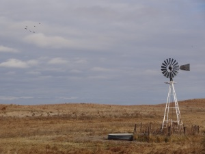 A marriage of man-made technology and beautiful prairie land...