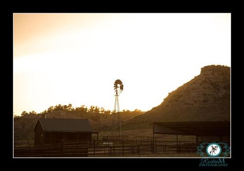 HootOwl.Corrals.Windmill.sunset.RM.