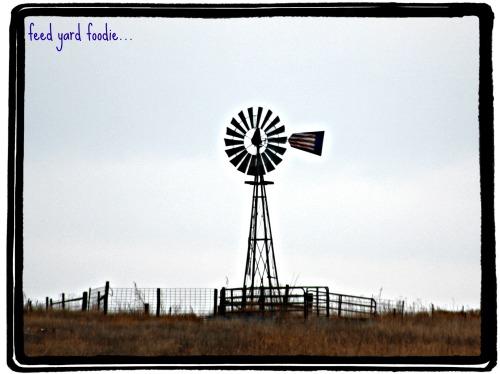 americanwindmill.jpg