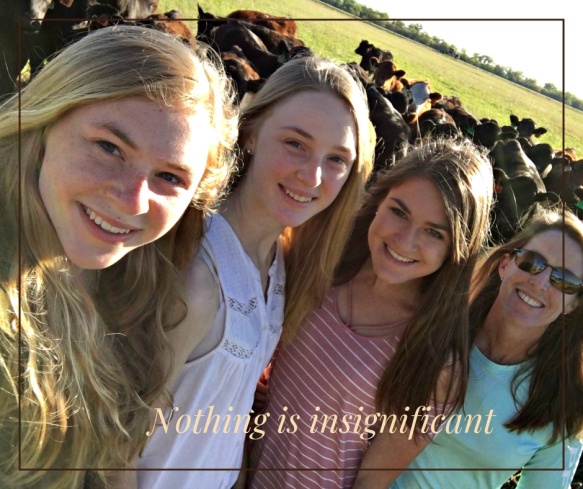 Feed Yard Foodie A Foodie Running A Cattle Feedyard In Nebraska